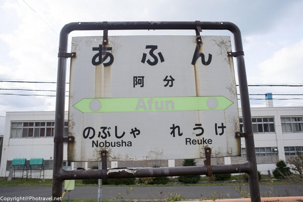mashike-25