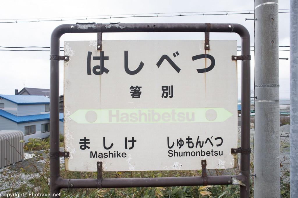 mashike-36